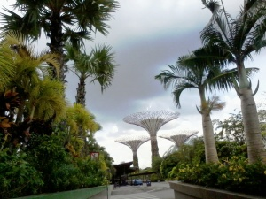 gardens by the bay (12)