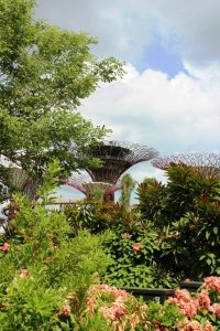 gardens by the bay (18)