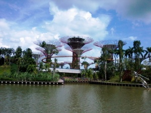 gardens by the bay (3)