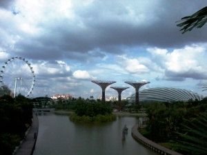 gardens by the bay (5)